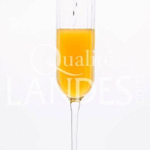 Recette de Cocktail Floc de Gascogne et Champagne