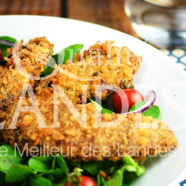 7B403-aiguillettes de canard fermier des landes panées © Qualité Landes (1)