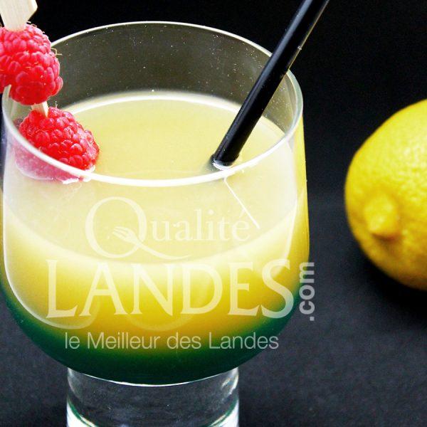 7B503-Floc curacao © Qualité Landes (1)