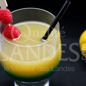 7B504-Floc curacao © Qualité Landes (2)
