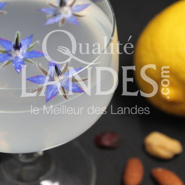 7B505-Floc Lemonache ©Qualité Landes (1)