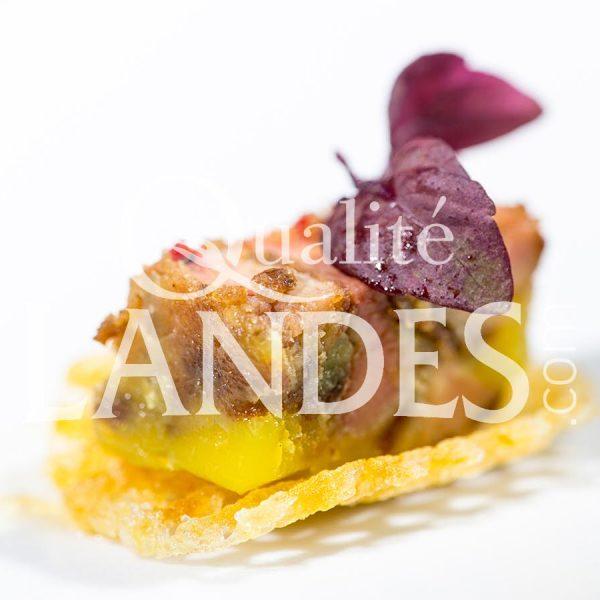 Recette de Petite bouchée de foie gras de Canard Fermier des Landes au Floc de Gascogne et Armagnac, confiture de Kiwi de l'Adour sur sa pomme gaufrette