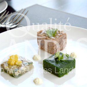 7B226-Terrine de Boeuf de Chalosse ©Qualité Landes - Chef Armando Nogeira La villa Mirasol (2)