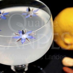 7B506-Floc Lemonache ©Qualité Landes (2)